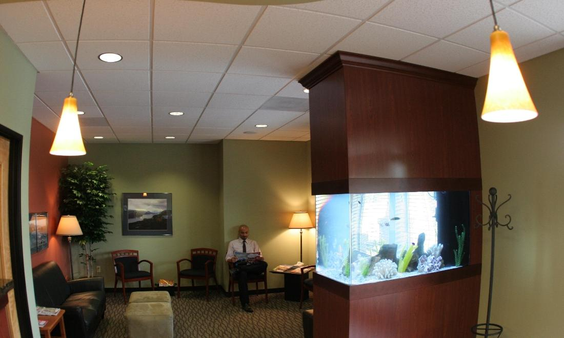Warm Springs Dental Reception - Updated photos after our refresh to come shortly!